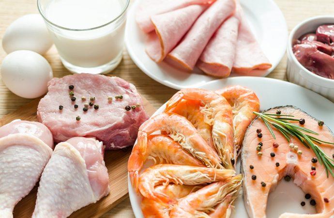 Białko z diety czy suplementacja?